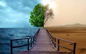 Which path of life will you choose image